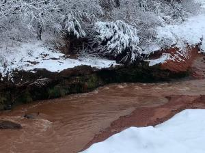 Muddy creek in the snow
