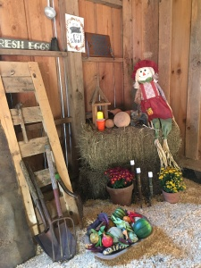 Sharing harvest blessings with neighbors