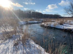 Beautiful winter river with snowy banks and sunshine